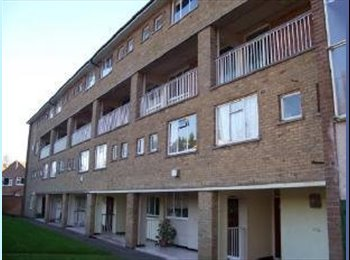 EasyRoommate UK -  Modern furnished bedrooms Available now for let!! , Weoley Castle - £285 pcm