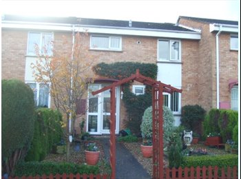 EasyRoommate UK - A single room  available in the polsoe area - Exeter, Exeter - £280 pcm