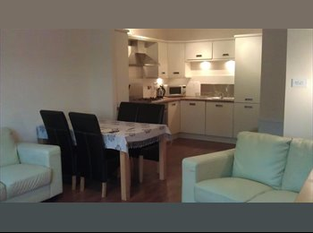 Smart Fully Furnished Flat