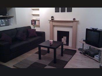 EasyRoommate UK - Room to Rent in Friendly House, Mount Pleasant - Swansea, Swansea - £330 pcm