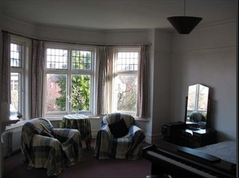 EasyRoommate UK - Spacious Period House In Portswood/Highfield - Portswood, Southampton - £400 pcm