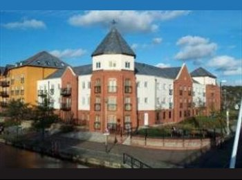 EasyRoommate UK - Professionals Flat share in NORWICH City/Riverside, Norwich - £550 pcm