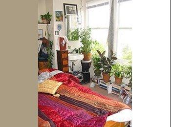 $390 Weekly room-tv/sink/WIFI/fresh air/view (inner sunset...