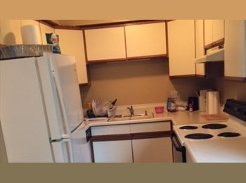 EasyRoommate US - Room in Nicely Furnished and Desirable Condo - Southfield, Southfield - $550 /mo