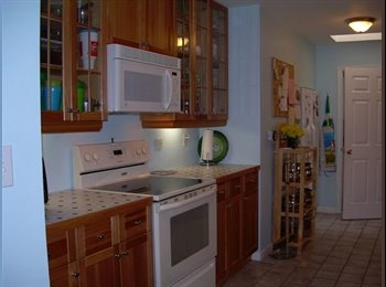 EasyRoommate US - Room in Melbourne FL walking distance to FIT - Melbourne, Other-Florida - $300 /mo