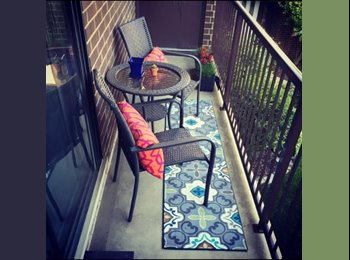 EasyRoommate US - Beautifully Furnished 2BR/2BA Condo in Elmhurst! - Naperville, Naperville - $725 pcm