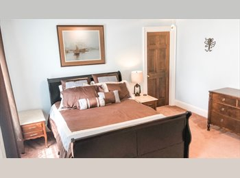 Looking for professional room mate to share house