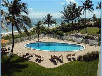 EasyRoommate US - STUDIO RENT APARTMENT SHARE - Hallandale Beach, Ft Lauderdale Area - $400 pcm
