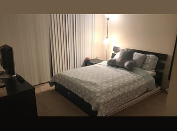 Roommate needed for apartment in downtown miami