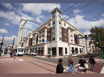 EasyRoommate US - Luxury apartments - Norfolk, Norfolk - $899 /mo