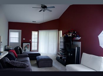 28 Professional, Seeking Roommate