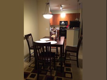 Bedroom for rent in furnished apartment - Duluth
