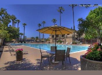 EasyRoommate US - Roommate - San Jose, San Jose Area - $1,000 pcm