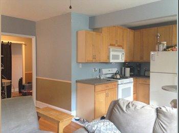 Evanston Edge/Rogers Park room for rent