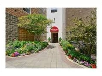 EasyRoommate US - High rise heaven, North Chicago - $950 /mo