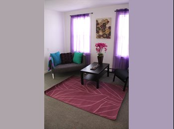 looking for pro or student girl to share apartment