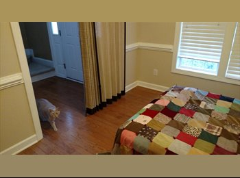 EasyRoommate US - Room for rent - Raleigh, Raleigh - $400 /mo
