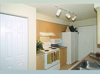 Roommate Wanted for Large Double Master 2/2 Apt