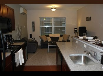 EasyRoommate US - $665 The Union at Dearborn 4br For Rent UM-D(Unive - Dearborn/Dearborn Heights, Detroit Area - $665 pcm