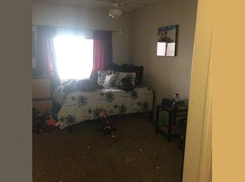 apartment at the domain!!