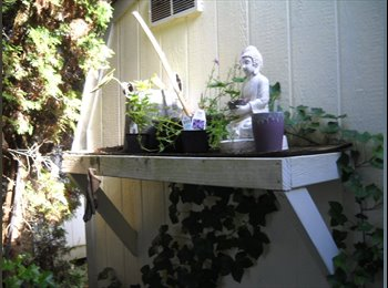 EasyRoommate US - Share Sanctuary in Aloha, Oregon - Washington County, Portland Area - $555 pcm