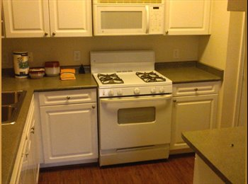 EasyRoommate US - rent room - Chesapeake, Chesapeake - $750 pcm