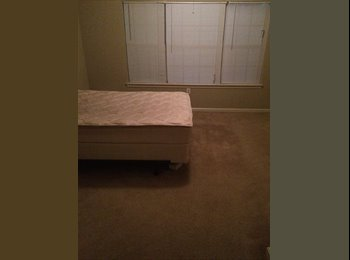 Looking for a trustworthy roommate