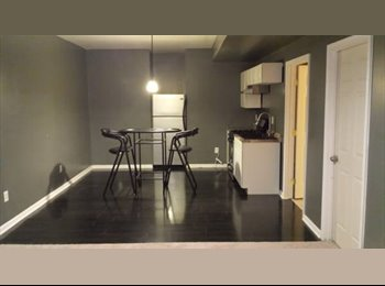 Basement Apartment - Open to couple and/or Pets!