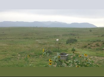 EasyRoommate US - Convenient Peaceful Country Living / Dog Heaven! - Pueblo, Other-Colorado - $400 pcm