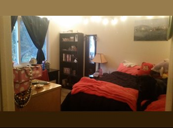 EasyRoommate US - Young Professional Seeking Responsible Roommate - North Albany, Albany - $575 /mo