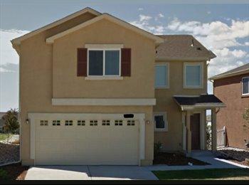 EasyRoommate US - Magnus123 - Colorado Springs, Colorado Springs - $500 pcm