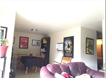 EasyRoommate US - Roommate wanted for 2bd/2bath between Downtown & Factoria :)  - Bellevue, Bellevue - $770 pcm