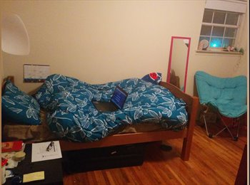 EasyRoommate US - Sublet Available - East Brunswick, Central Jersey - $375 pcm
