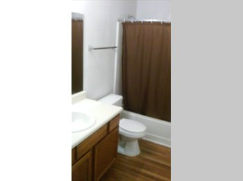 nice 2 bedroom 2full bath for rent