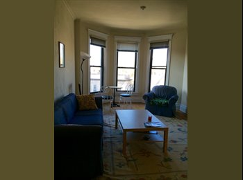 1 Roommate for 3 BR - Classic Chicago Apartment