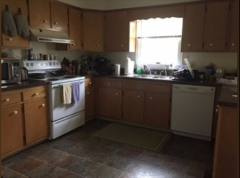 EasyRoommate US - Room to Rent, 15 min Walk from UD CAMPUS - Newark, Newark - $400 pcm