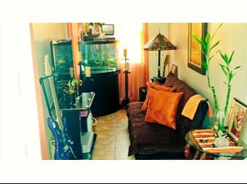 EasyRoommate US - CLEAN, Trustworthy, Reliable Roommate WANTED! - Yonkers, Westchester - $800 /mo