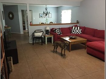 Room for Rent in Cute House