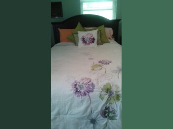 One Bedroom room for rent in apartment