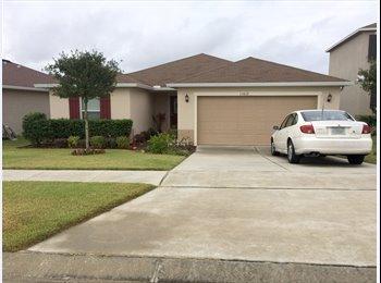 EasyRoommate US - cisneros - Lake County, Orlando Area - $500 /mo