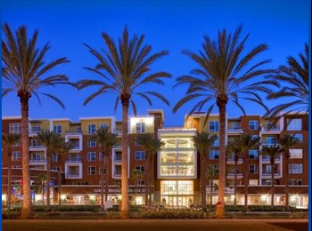 EasyRoommate US - Room 4 Rent - Platinum Triangle, Anaheim - $1,000 pcm