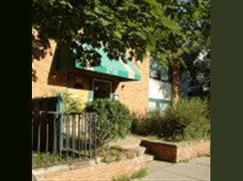 EasyRoommate US - Uptown Apartment for Rent (moving town) - Calhoun-Isles, Minneapolis / St Paul - $815 pcm