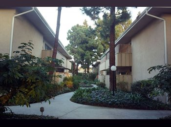 1bd, Prvt bath in a 2 bed/2 bath-Huntington beach