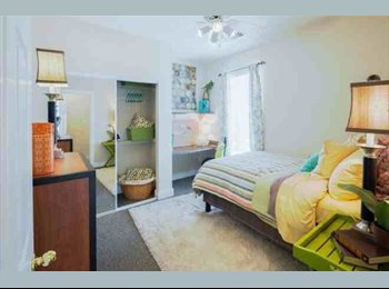 EasyRoommate US - Sublease for The Commons  - Tallahassee, Tallahassee - $385 pcm