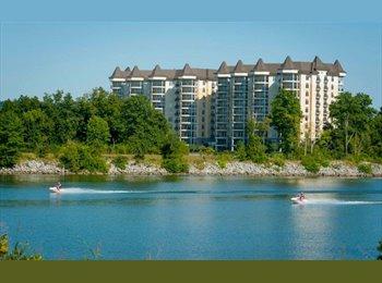 EasyRoommate US - Beautiful Condo, Right by th river, Bring ur Kayak - Central Nashville-Davidson Co., Nashville Area - $850 pcm