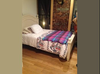 EasyRoommate US - Final Roommate Needed in Gorgeous Park Slope 3 Bed - Park Slope, New York City - $1,400 pcm