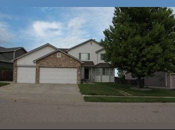 EasyRoommate US - Room for mature renter in a 2518 ft2 home - Fort Collins, Fort Collins - $675 pcm