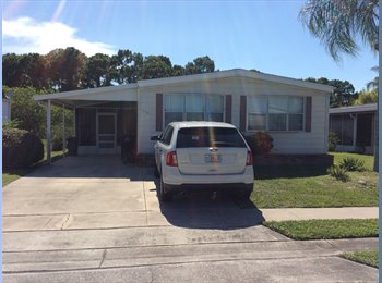 EasyRoommate US - Quiet over 40 Roommate Wanted - Melbourne, Other-Florida - $500 pcm