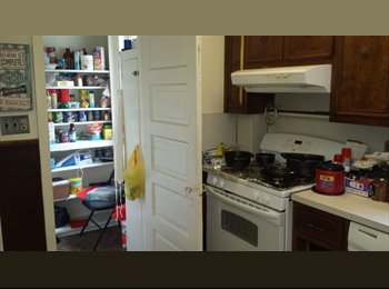 EasyRoommate US - $533 single room to sublet for 12 month lease. - New Brunswick, Central Jersey - $533 pcm