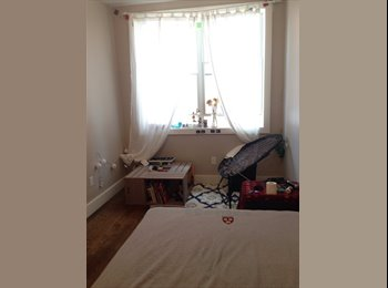 Large, sunny, clean room in beautiful Clinton Hill